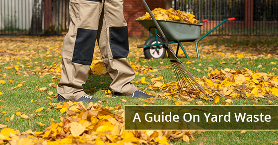 A Guide On Yard Waste