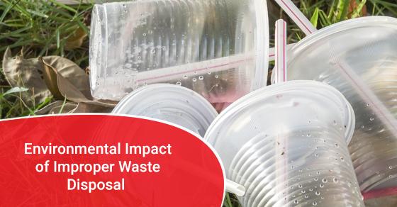Environmental Impact of Improper Waste Disposal