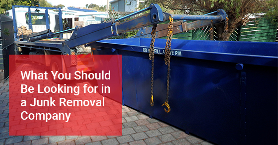 What You Should Be Looking for in a Junk Removal Company