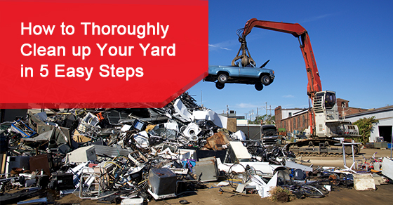 How to Thoroughly Clean up Your Yard in 5 Easy Steps
